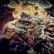 Stormfirebird