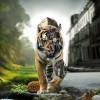 Аватар пользователя Rus77lan