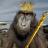 Jose Borreguero's avatar