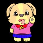 Lulu Puppy