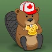 Crypto Beaver