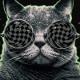 theschrodingercat's Avatar
