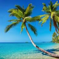 beachmiles