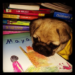 Books, Coco and Me