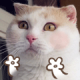 yyydao's avatar