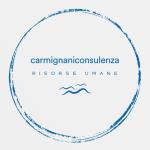 CARMIGNANICONSULENZA Consulenza in Organizzazione, Formazione, Valutazione, Gestione delle Risorse Umane, Privacy, Comunicazione e Controllo di Gestione