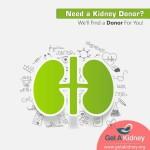 Kidneytransplant Donor