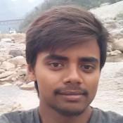 Vijay Krishnavanshi