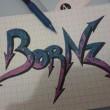 BorNz08