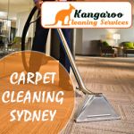 Kangaroo Cleaning Services - Carpet Cleaning Sydney