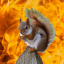 The Burning Squirrel of Irrelevancy