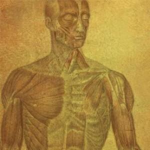 Humanoid_Invasion