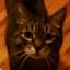avatar for alwhite