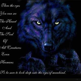 spiritwolf04