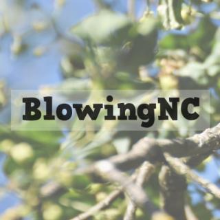 BlowingNC
