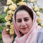 Photo of شیما رکابدار