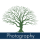 jetalkington avatar image