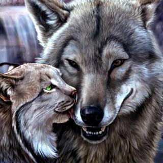 Famille nombreuse, handicap et allergie