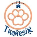thanesix's gravatar image
