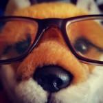 Miss Foxy