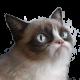 TheLeoBrine's avatar