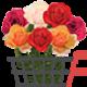 Ak flowers