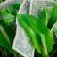 Profit Greenly