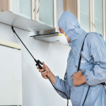 Commercial Pest Control Treatments