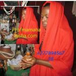Prof Mama Hanisha