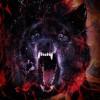 Wolfsangel1488