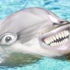 View thecookiepvp8's Profile