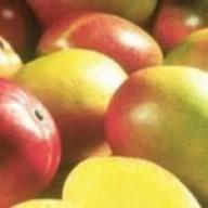 FruitBoss