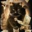 catinmortal
