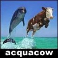 AcquaCow