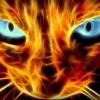 Jaerin's avatar