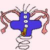 Avatar von Ygramul
