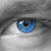 Avatar of Dominik Jansen