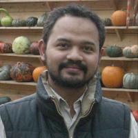 Author's gravatar