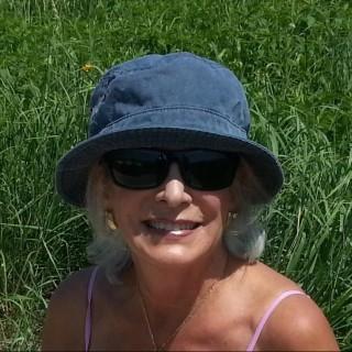 Carol Ann Heath, Ed.D.