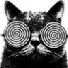 hypn0cat avatar