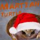 Martian_Turtle