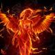 phoenixrobinsonblog