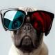 FlorianFun's avatar