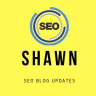 shawnseoblog