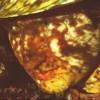 Objectivas manuais (anel focus + exposure) p/ Canon Eos 40D - última mensagem por polanski
