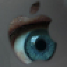 Avatar for Steve