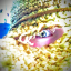 avatar for alyokaye0626
