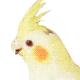 Profile picture of Mignon Style