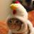 Steven F's avatar