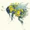 Bee Holland